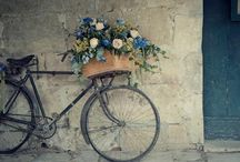 bicycles & flowers / bicycles with flowers