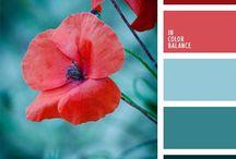 Palettes of colors