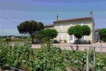 Château Champion / visite du vignoble et des chais au Château Champion à Saint Emilion Bordeaux Réservez avec winetourbooking.com