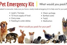 #preparedPet / Emergency Preparedness must include your pets. Leave no-one behind! Check out these FREE UK RESOURCES from trusted partners. Find out more about #30days30waysUK by visiting the website at http://30days30waysUK.org.UK