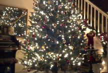 Gallery of Christmas Trees / Hart-T-Tree Farms Christmas trees trimmed for the season by our south Florida customers.