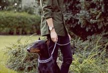 Shepherd guy
