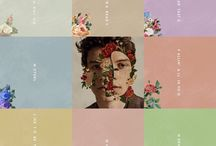 album Shawn Mendes❤