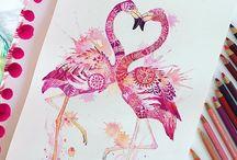 Flamingo caixa