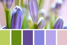 Χρώμα στο σπίτι μας