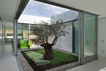 Wewnętrzne ogrody, szklarnie