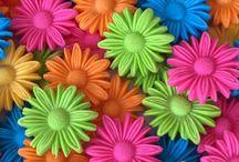 Papiers - à Fleurs