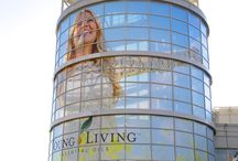 YL Events / A glimpse into some of the fun events at Young Living!