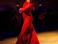 Flamenco ♥ / by Noemi Michel