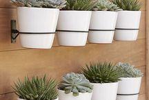 Murs jardin