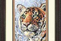 Dimension Tiger