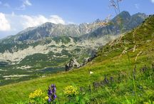 Polska bergen - Polish mountains