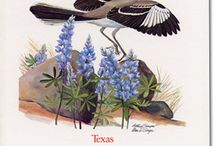 Texas My Texas / Texas, Our Texas! all hail the mighty State! Texas, Our Texas! so wonderful so great! Boldest and grandest, withstanding ev'ry test O Empire wide and glorious, you stand supremely blest.