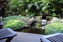 tropical garden patios