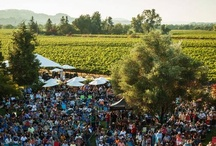 Summer Wine Events
