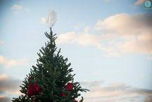 'Tis the Season / Celebrating the holidays at Long Cove at Cedar Creek Lake.