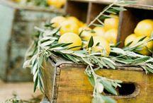 Market produce style