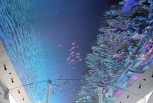 Digital Ceiling
