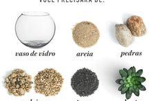 terraquios