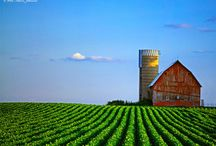 Rural America / The beauty of country scenes and farms that are the heart of America