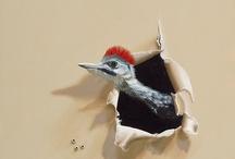 fuglemalerier