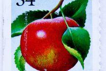 Briefmarken Blumen Obst