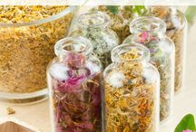 Herbalism | Gift Ideas / Spread the joy of herbalism by gifting them to all your friends