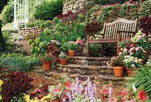 New Digs Ideas - Gardening