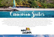 Cinnamon Suites / Introducing the new Cinnamon Suites at Mount Cinnamon Resort.