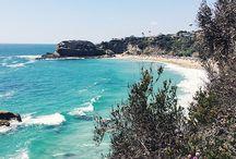 My Favorite Laguna Beach
