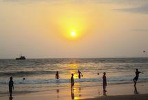 Goa / Picture perfect Goa