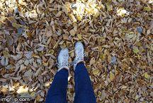 Where my feet take me