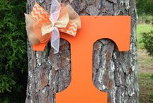 tennessee vols / by Regina Harris