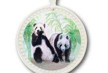 Panda Bears and Koala Bears