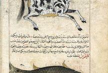 Acayib el-Mahlukat defterinden