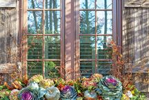 window boxes