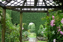 Natura / Fiori, piante, giardini, alberi, terra, monti, acqua,..natura tutta!