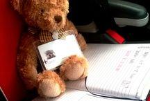 Ollie the Parenta bear / Ollie's adventures