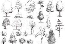 Hand drawing-tree