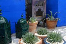 Back yard ideas next summer! Going Moroccan !!☀️