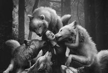 THE COMPANY OF WOLVES.