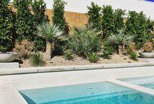 Desert Landscape Projects
