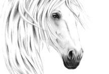 Fehér lovak