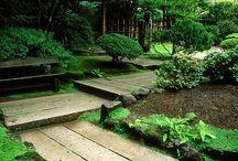 Сад, парк, ландшафт