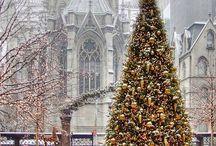 Beautiful Cristmas Trees