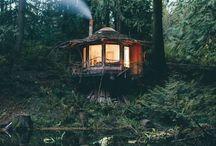 ağaç ev & tree house