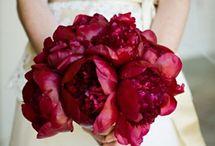 Maggie Flower Inspiration