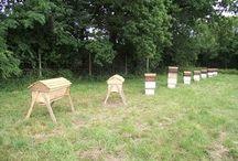 Včelaření