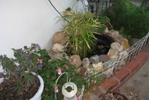 Garden Inspirations / my hand to shovel work in a yard that resists domestication....and my inspirations / by Lisa Howell