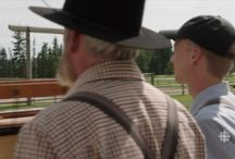 {MaleGuestStars&PastStars} / Male Heartland Guest And Past Stars!